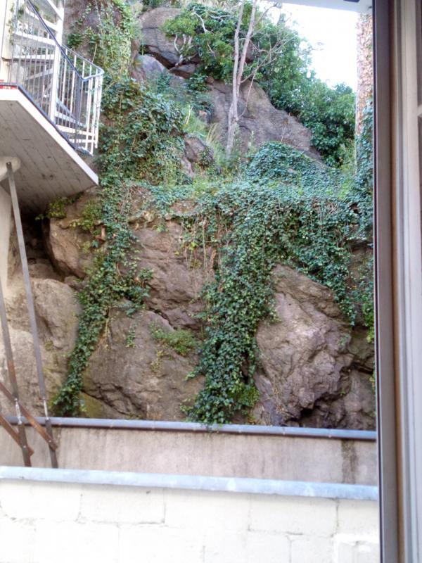 Terrasse vue de la Chambre 1